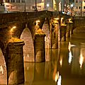 pont de Verdun 1