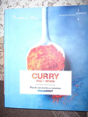 curry_thai_indien