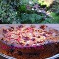 Gâteau lyonnais aux framboises et pralines roses