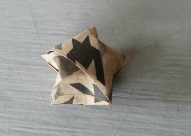 Mini étoile pied poule (3)