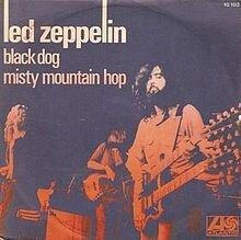 220px-Black_Dog45