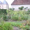 Château de Cormatin 2009,le potager