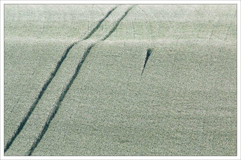 plaine paysage ble empreintes 100515
