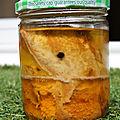 Conserve de thon à l'huile