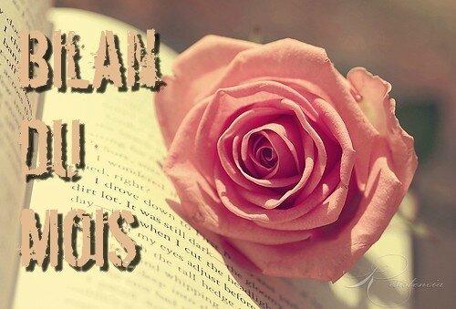 romance,rose,writing,blossom,pink,floweronbook-0261803dcbf92529e22bdd29057d6291_h