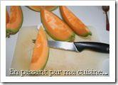 preparationmelon
