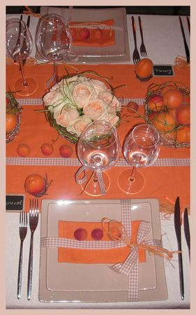2009_07_07_table_abricots15
