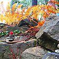 arbousier sur galets yurtao