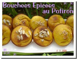 blog_bouchees_potiron_2