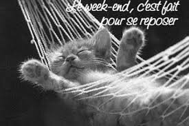 chat repos WE