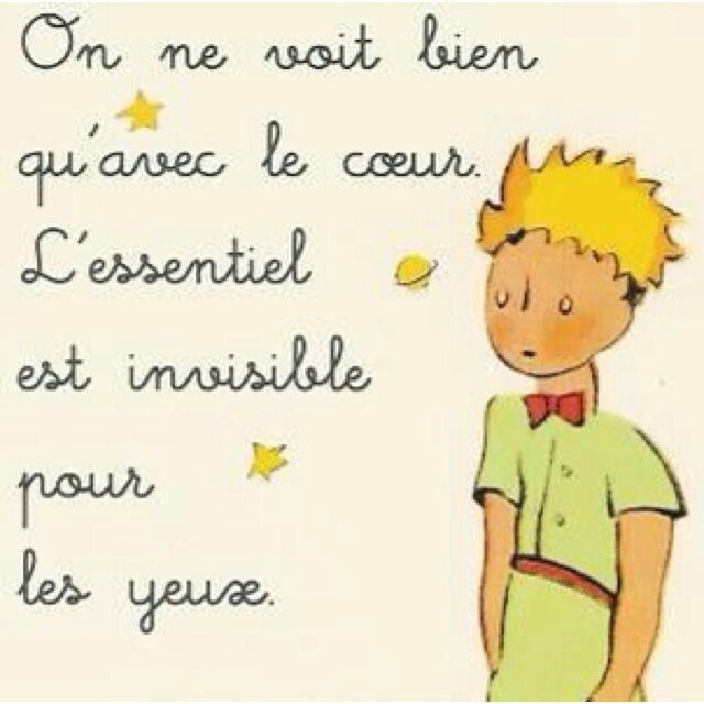 f4f13704aa9d0934c8a29958dac47068--the-little-prince-little-prince-quotes