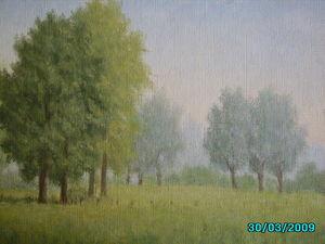paysage_009