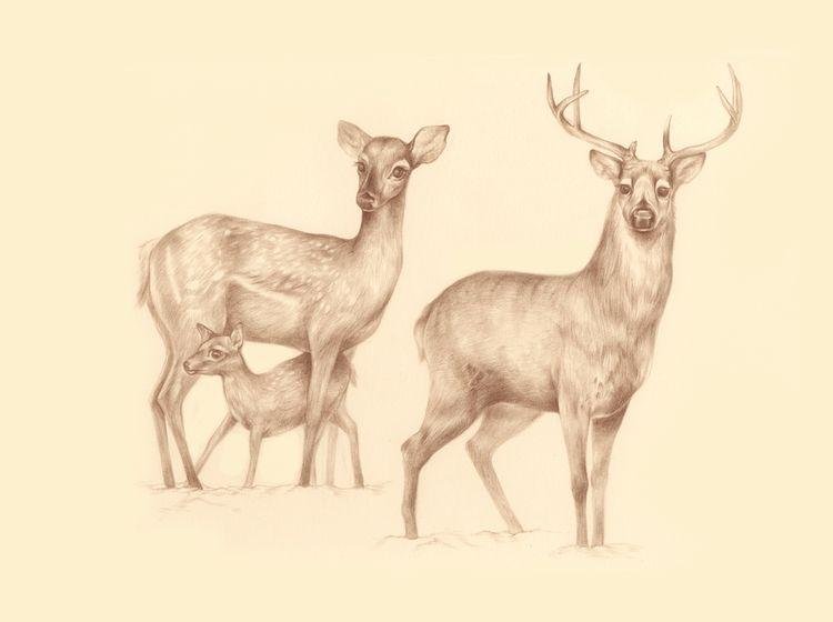 9_gather_deer