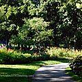 Bois-de-Coulonge-Arboretum-25