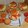 Verrine façon tarte aux abricots