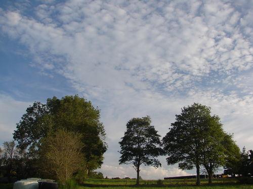 2008 09 05 Altucumulus dans le ciel