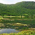 Lac Genos 09061645