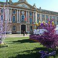 Toulouse, ville de la violette