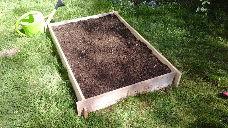 Rectangle potager