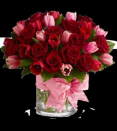 tulipesag16otuf