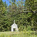 Bilan 2015 du site de la chapelle du bois le conte