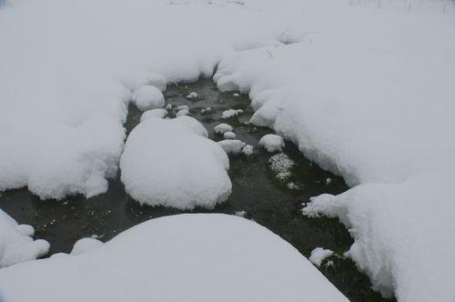 2008 12 15 Neige et eau qui coule