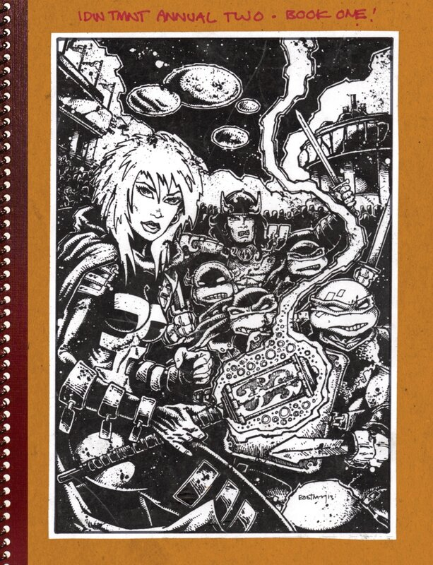 IDW TMNT the kevin eastman notebook book 1
