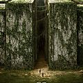 Le labyrinthe (the maze runner) : bande-annonce vf (hd)