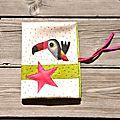 Protège carnet de santé toucan