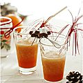 Test pour le blender vitality pro haute performance....jus d'orange de noël....