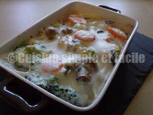 gratin de poisson légumes 06