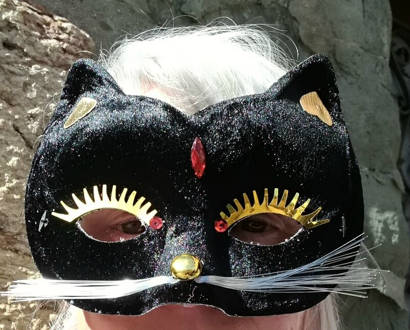 N-masque chat (2)