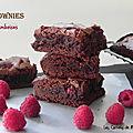 Brownies au chocolat et aux framboises, sans gluten et sans lactose