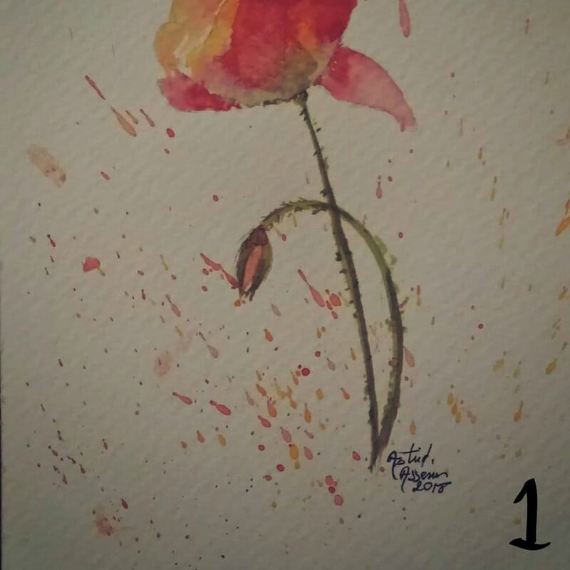 postcard n° 1 le coquelicot
