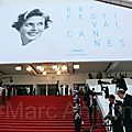 Festival de cannes 2015 notes 4/10.