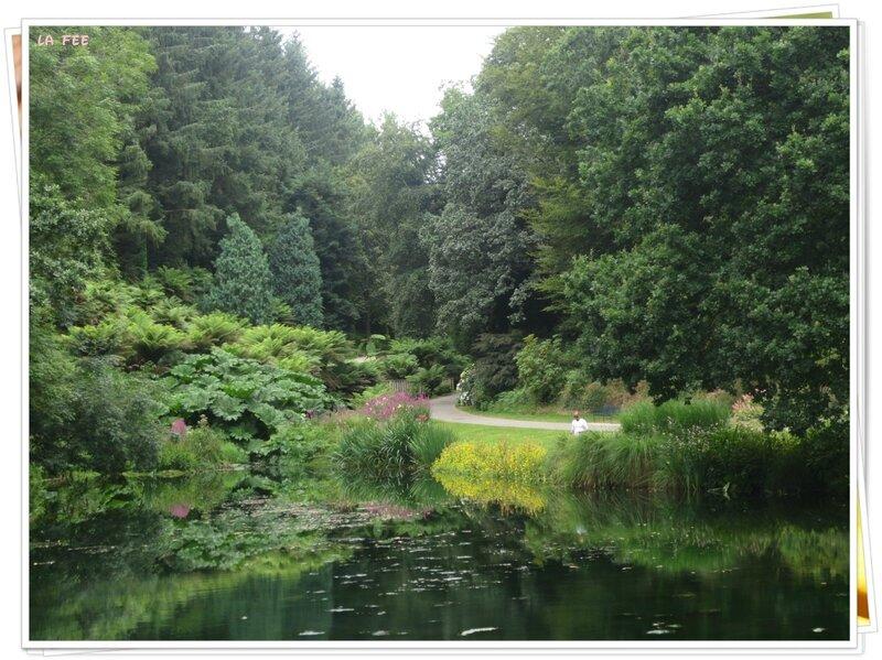 jardin botanique (43)