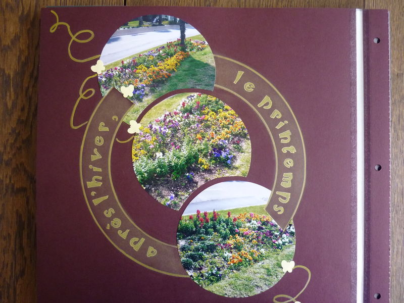 Un parterre de fleurs - 2008