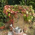 Bonjour l'automne !