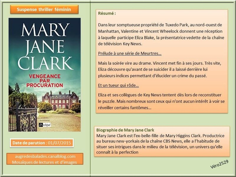 mary jane clark veangeance par procuration