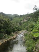 Karangahake gorge (1)