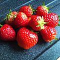 miam des fraises.