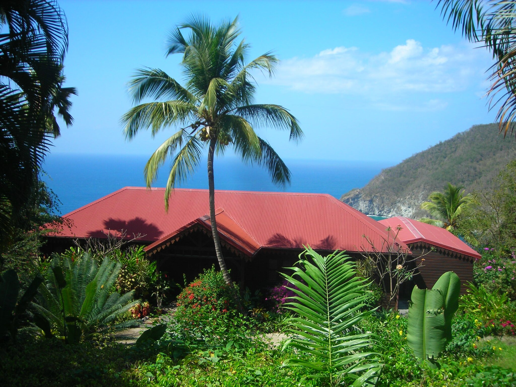 Flore de Guadeloupe Location Grand Studio climatisé aux Antilles