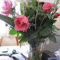 fleurs_vivi