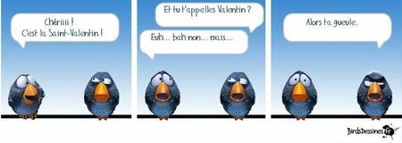 humour-saint-valentin-big