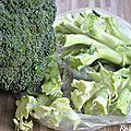 Velouté de brocolis 100% recup (vegan, et sans lactose mais surtout très bon)