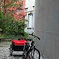 Vélo, automne_4568