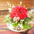 Petite composition géranium rouge