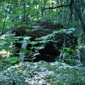 Les dolmens de ternant (côte-d'or)