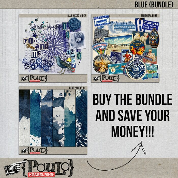 paulakesselring_blubundle_preview