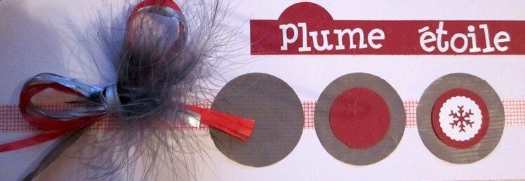 plume_etoile